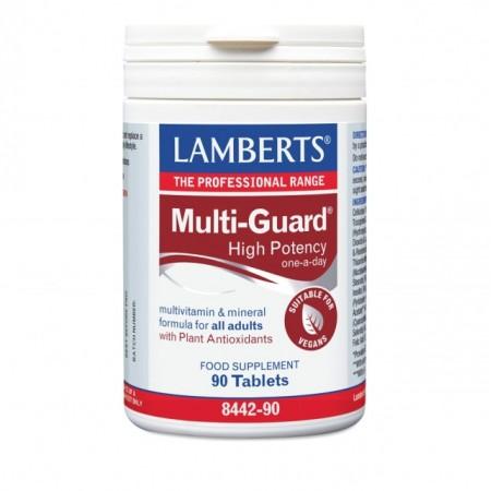 LAMBERTS MULTI GUARD (ONE DAILY) 90TABS